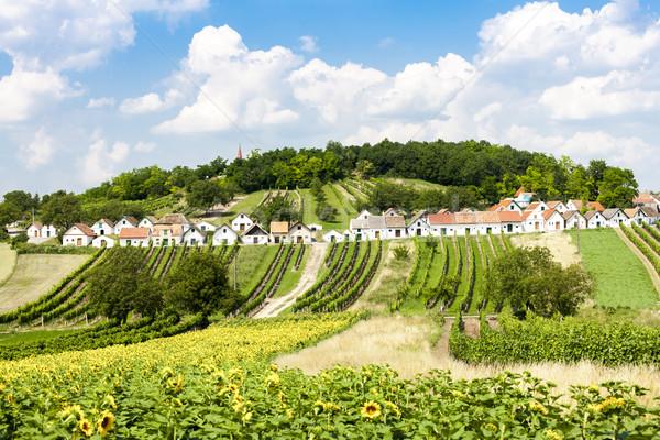 Bor alsó Ausztria napraforgó építészet vidék Stock fotó © phbcz