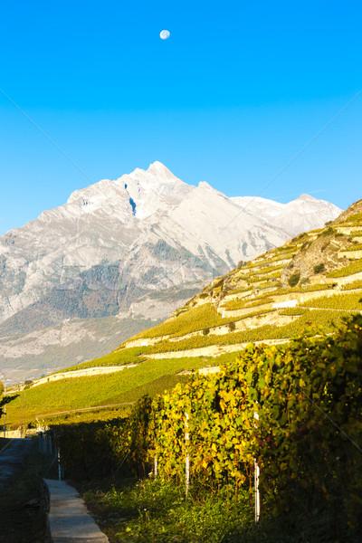 Сток-фото: Швейцария · природы · пейзаж · снега · гор · завода