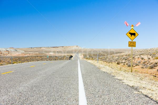 дороги Юта США пейзаж пустыне дорожный знак Сток-фото © phbcz