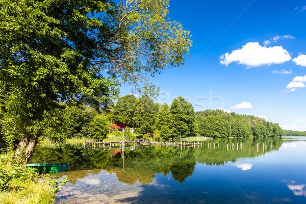 Lago Polônia árvore natureza reflexão silêncio Foto stock © phbcz