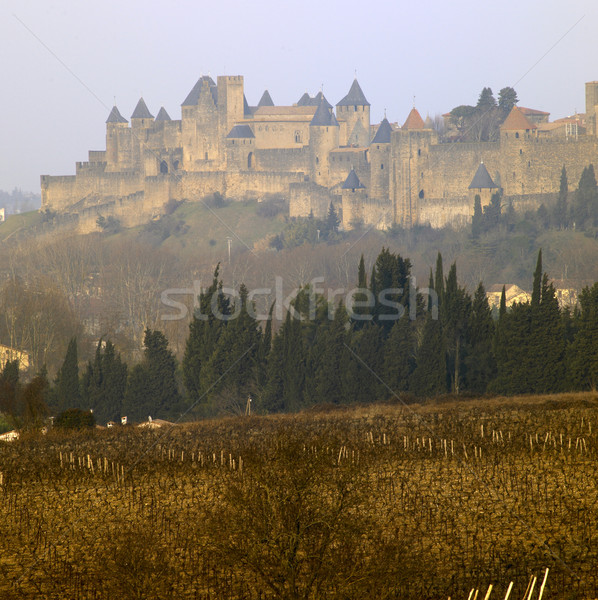 Carcassonne, France Stock photo © phbcz