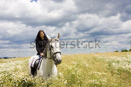 Lovas lóháton nő állatok fiatal lovak Stock fotó © phbcz