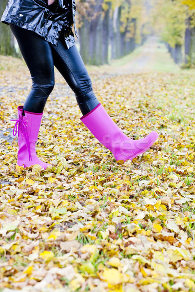 detail of woman in autumnal nature Stock photo © phbcz