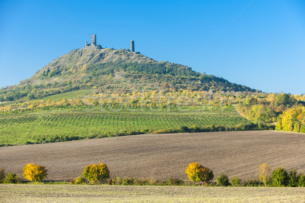 Ruínas castelo República Checa edifício paisagem viajar Foto stock © phbcz