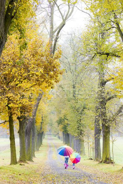 Anya lánygyermek esernyők őszi sikátor nő Stock fotó © phbcz