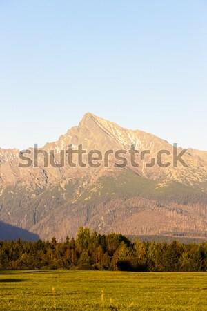 Berg hoog Slowakije landschap bergen Europa Stockfoto © phbcz