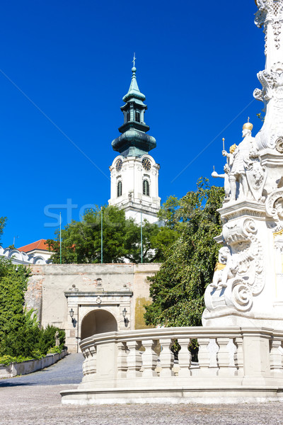 Stock photo: the plague column and castle in Nitra, Slovakia