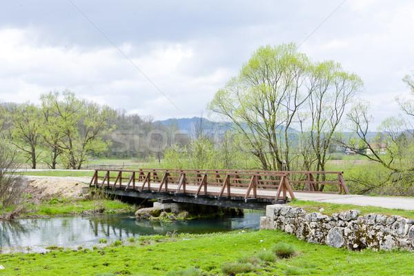 bridge, Bosnia and Hercegovina Stock photo © phbcz