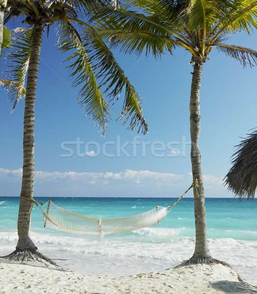 on the beach, Cayo Coco, Cuba Stock photo © phbcz