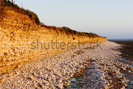 coast of Oleron Island, Poitou-Charentes, France Stock photo © phbcz