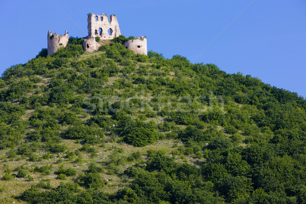 ruins of Turniansky Castle, Slovakia Stock photo © phbcz