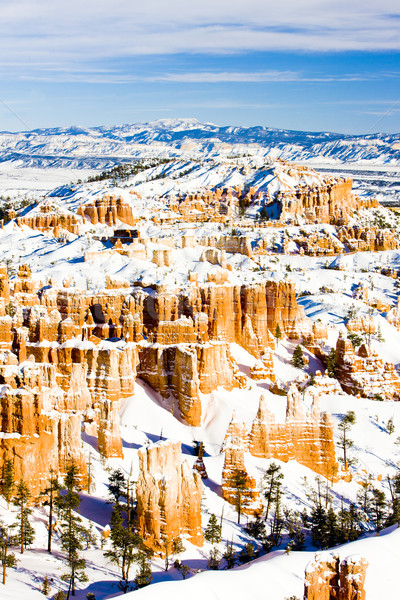 Canyon park winter Utah USA landschap Stockfoto © phbcz