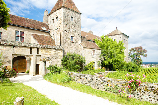 Gevrey-Chambertin Castle, Cote de Nuits, Burgundy, France Stock photo © phbcz