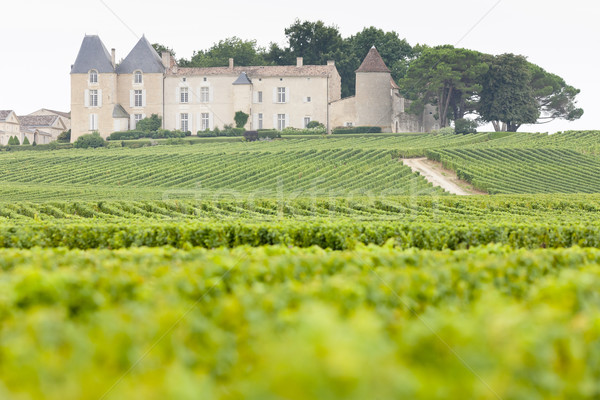 vineyard and Chateau d'Yquem, Sauternes Region, France Stock photo © phbcz