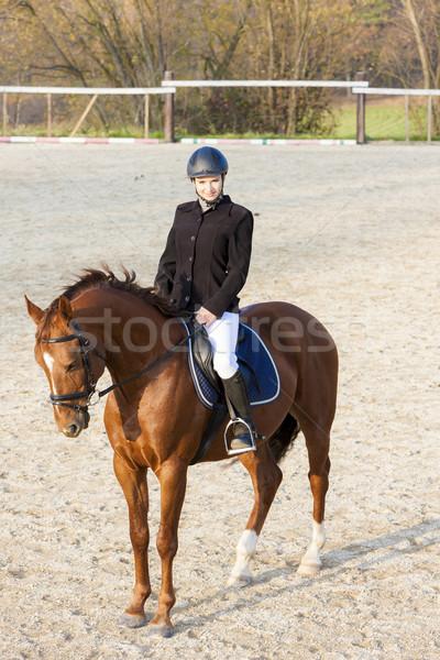 Lovas lóháton nők ló fiatal állat Stock fotó © phbcz