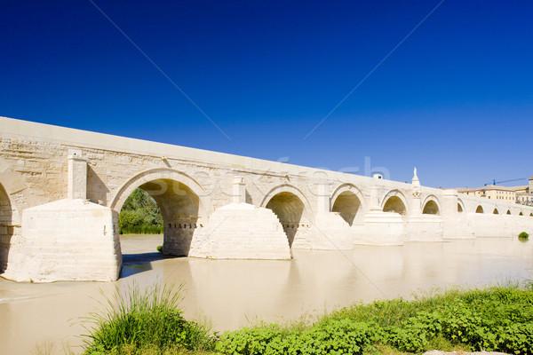 Roman bridge, Cordoba, Andalusia, Spain Stock photo © phbcz