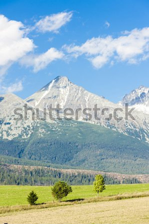 Krivan Mountain and Western part of High Tatras, Slovakia Stock photo © phbcz