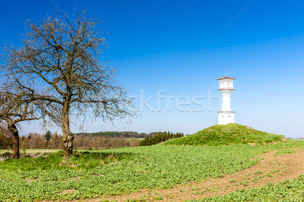 Tortura República Checa árbol arquitectura Europa aire libre Foto stock © phbcz