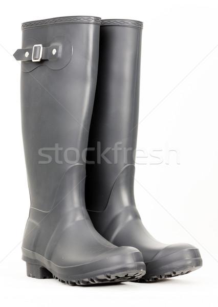 Grigio stivali di gomma scarpe stile protezione coppia Foto d'archivio © phbcz
