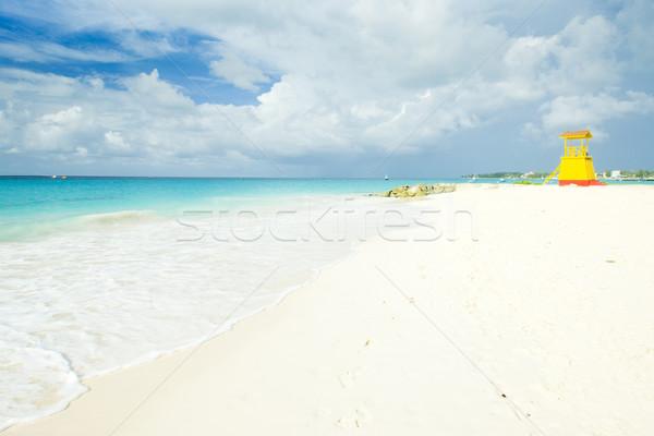 Fülke tengerpart cég Barbados Karib tenger Stock fotó © phbcz