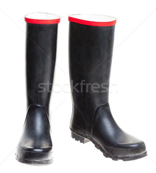 Wellingtons Stock photo © phbcz