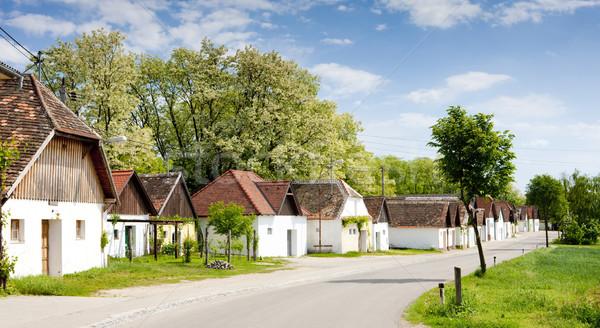 вино снизить Австрия здании архитектура деревне Сток-фото © phbcz