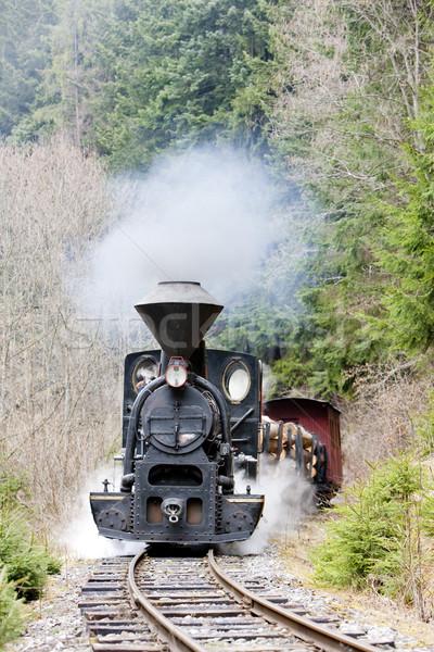 Stock photo: steam train, Ciernohronska Railway, Slovakia