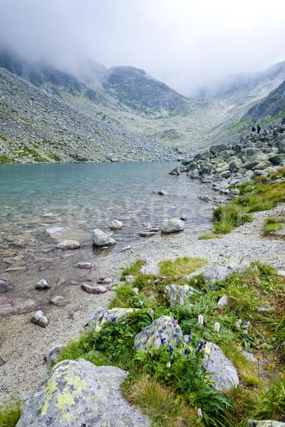 Uzun yüksek Slovakya manzara dağlar göl Stok fotoğraf © phbcz