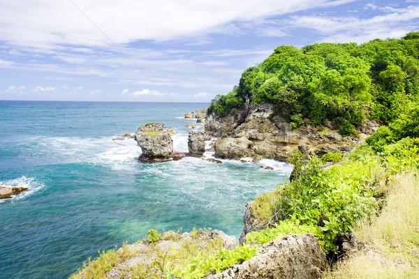 Stockfoto: Barbados · caribbean · landschap · zee · reizen · paradijs