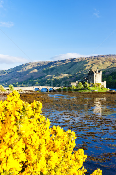Castelo escócia montanhas lago arquitetura história Foto stock © phbcz