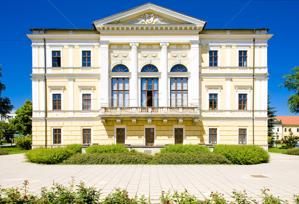 town hall, Spisska Nova Ves, Slovakia Stock photo © phbcz
