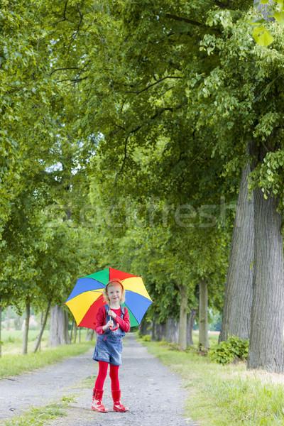 Dziewczynka parasol aleja dziewczyna wiosną dziecko Zdjęcia stock © phbcz