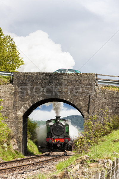 steam train, Strathspey Railway, Highlands, Scotland Stock photo © phbcz