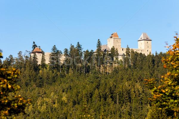 руин замок Чешская республика осень архитектура осень Сток-фото © phbcz