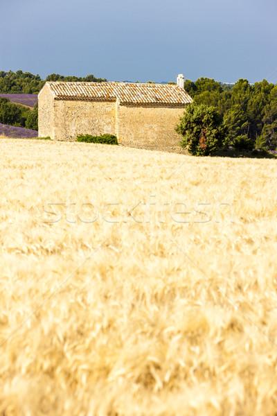 Kapel graan veld plateau kerk architectuur Stockfoto © phbcz