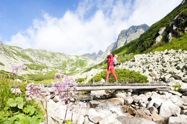 Donna zaino in spalla freddo valle alto Foto d'archivio © phbcz