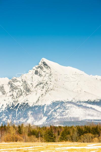 Krivan, Vysoke Tatry (High Tatras), Slovakia Stock photo © phbcz