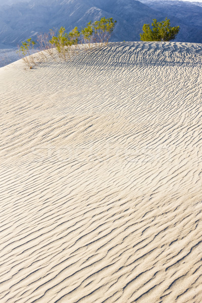 Stock fotó: Homok · halál · völgy · park · Kalifornia · USA