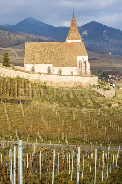 Frankrijk gebouw reizen architectuur geschiedenis wijngaard Stockfoto © phbcz