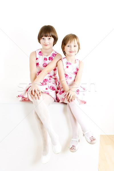 Twee zusters soortgelijk jurken meisje Stockfoto © phbcz