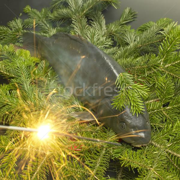 чешский Рождества традиция карп рыбы свет Сток-фото © phbcz