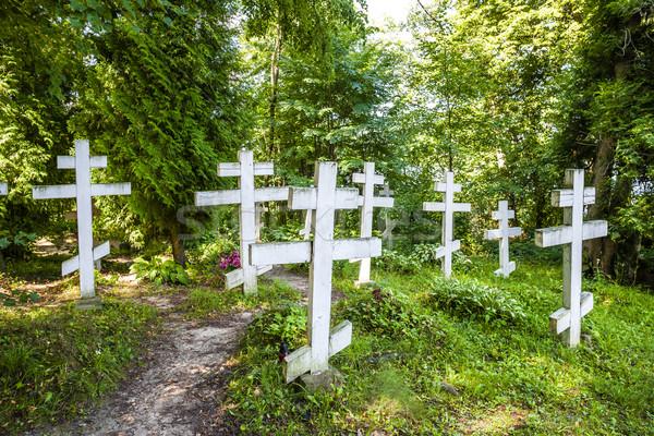 cemetery in campus of Wojnowo monastery, Warmian-Masurian Voivod Stock photo © phbcz