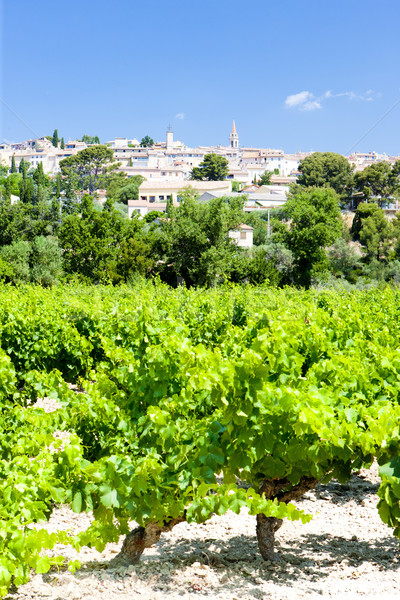 La Cadiere d'Azur with vineyards, Provence, France Stock photo © phbcz