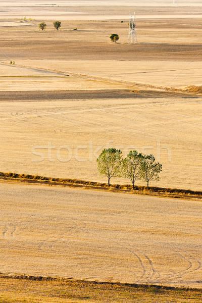 landscape near Ampudia, Castile and Leon, Spain Stock photo © phbcz