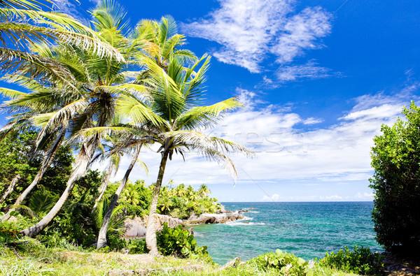 Balandra Bay, Trinidad Stock photo © phbcz