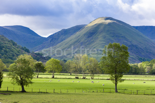 landscape of Lake District, Cumbria, England Stock photo © phbcz