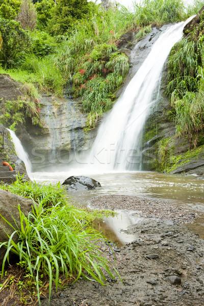 Grenada water reizen vallen stream vallen Stockfoto © phbcz