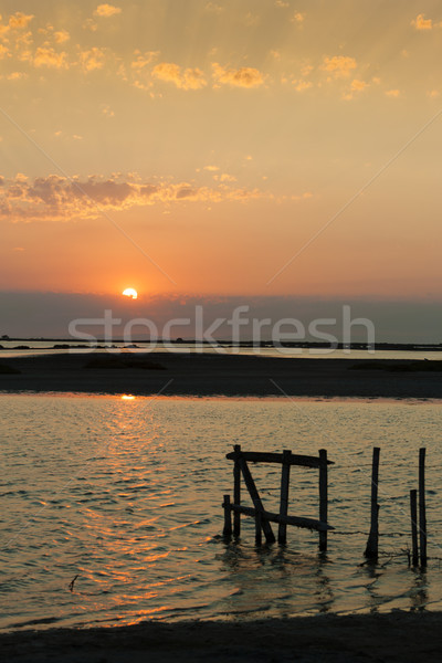 sunset in Camargue, Provence, France Stock photo © phbcz