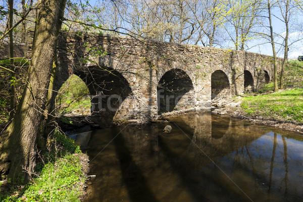 барокко моста Чешская республика воды путешествия архитектура Сток-фото © phbcz