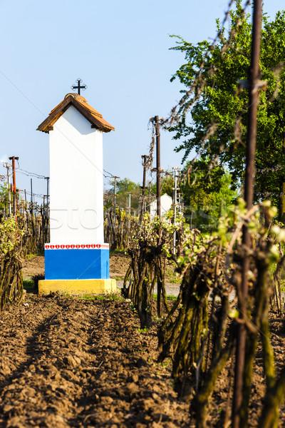 God's torture with vineyard near Nechory, Czech Republic Stock photo © phbcz